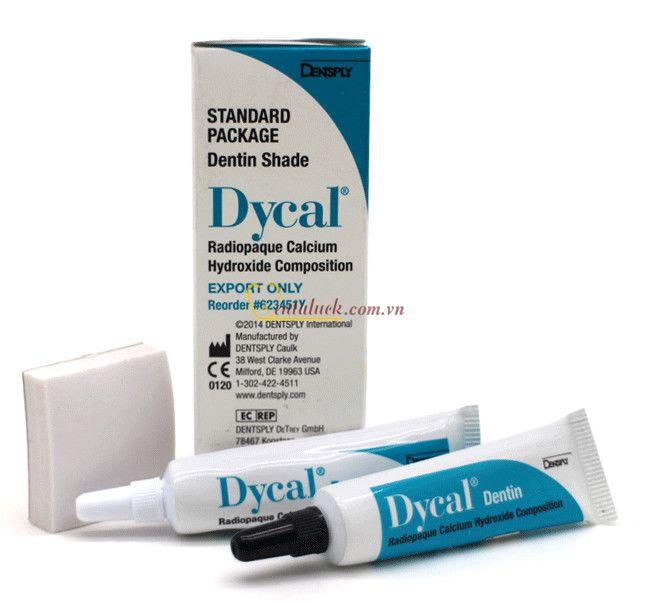 Che tủy Dycal Standard Package màu ngà
